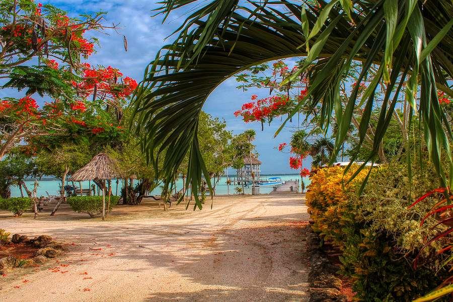 Belize beach boardwalk