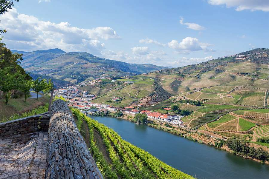 Douro valley vineyard views Portugal