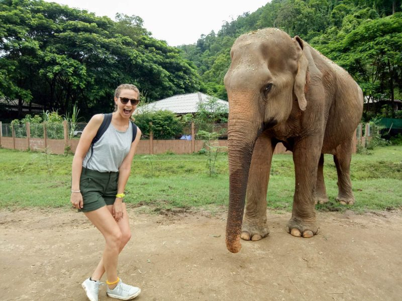 Excited to see elephants in Thailand