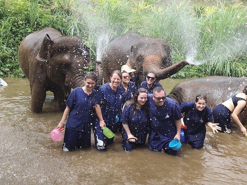 Splish splash taking a bath with elephants