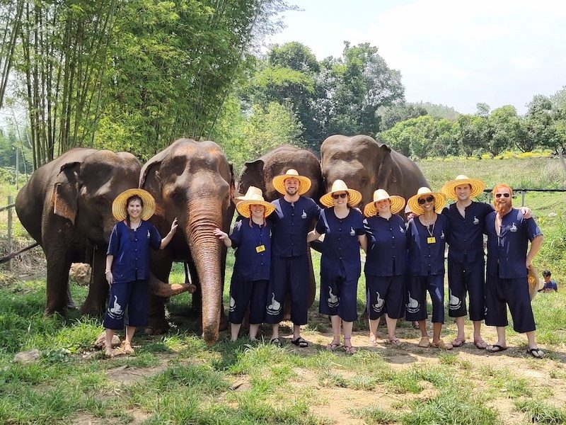 Group love at the elephant sanctuary
